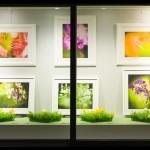 Schaufenster der ANGST-Metzgerei, Marktgasse 19, 8180 Bülach