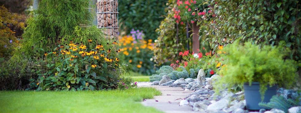 Naturfotografie - schöne Fotos Ihres Gartens ...