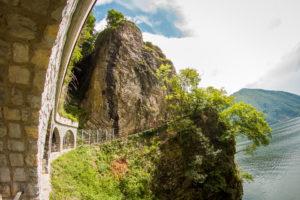 Der Olivenweg führt entlang des Sees, von Gandria bis nach Lugano