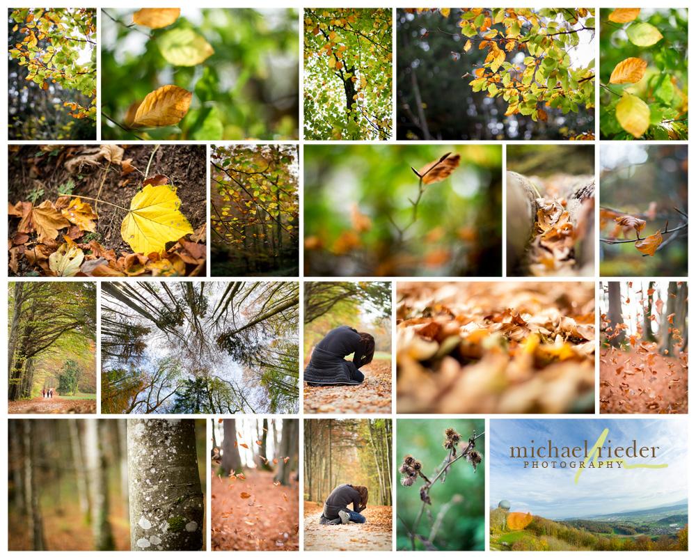 Photo-Walk-Talk Lägern Hochwacht (Oktober 2017) | Michael Rieder Photography